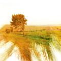 Rural by Romano Da Silva