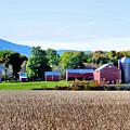 Rural Scene  by Jeelan Clark