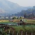 Rural Scene Near Chiang Mai, Thailand by Bilderbuch