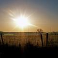 Rural Sunrise by Sue Stefanowicz