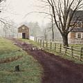Rush Hour by Steven J White PWS