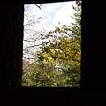 Rush Windows 1 by John Franke