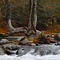 Rushing Water by Mark Hill