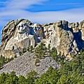 Rushmore by Tatiana Travelways