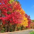 Russellville Road Fall Colors by Sven Kielhorn