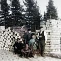 Russian Lumber Harvest by John Feiser