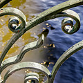 Russian Wrought Iron by KG Thienemann