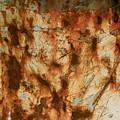 Rust 18 by Bernie Smolnik