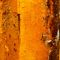 Rust Abstract 2 by Lilia D