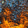 Rust Abstract 3 by Lilia D