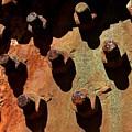 Rust by Brad Lindsey