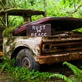 Rust In Peace 2 by Bruce Chevillat