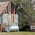 Rusted Tin Shed In Burnt Corn by Lynn Jordan