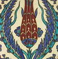 Rusten Pasha Tulip Tile by Bob Phillips