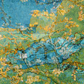 Rustic 6 Van Gogh by David Bridburg