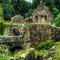 Rustic Abbey Remains by Dennis Dame