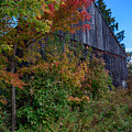 Rustic Barn Above The Fall Colors by Jeff Folger