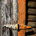 Rustic Barn Hinge by Perry Webster