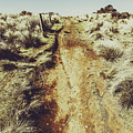 Rustic Country Trails by Jorgo Photography - Wall Art Gallery
