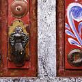 Rustic Door by Jeremy Woodhouse