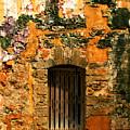 Rustic Fort Door by Perry Webster