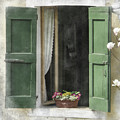 Rustic Open Window With Green Shutters by Elaine Plesser