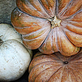 Rustic Pumpkins by Joan Carroll