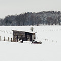 Rustic Shed In The Winter by Pati Photography