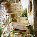 Rustic Steps In Crete by Elaine Hill
