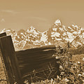 Rustic View Of Grand Teton by Dan Sproul