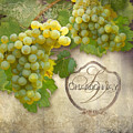 Rustic Vineyard - Chardonnay White Wine Grapes Vintage Style by Audrey Jeanne Roberts