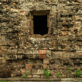 Rustic Wall by Javier Flores