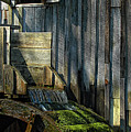 Rustic Water Wheel With Moss by Mitch Spence