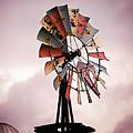 Rustic Windmill by Laura Gordon