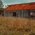 Rusty Barn by Marc Daly