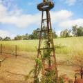 Rusty Garden Feature by Elaine Teague
