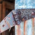 Rusty Hinge by Carlton Cates