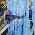 Rusty Hinge In The Blue Of The Evening by Douglas Barnett