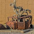 Rusty In The Desert by Scott Read
