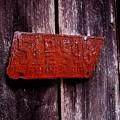 Rusty License Plate by Yvonne Rita Roberts