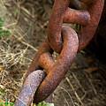 Rusty Links by Phyllis Denton