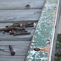 Rusty Nails by Sharon Wunder Photography