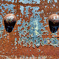 Rusty Rivets by Olivier Le Queinec