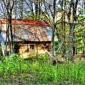 Rusty Roof by Jim Turri