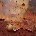 Rusty Train  by Karol Livote
