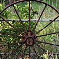 Rusty Wagon Wheel On Fence by Sheila Brown