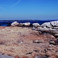 Rye Nh Shoreline by Marcia Lee Jones