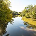 Sabine River Near Big Sandy Texas Photograph Fine Art Print 4108 by M K Miller