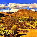 Sabino Canyon Panorama No. 1 by Roger Passman