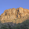 Sabino Canyon Wall 1 by Jemmy Archer